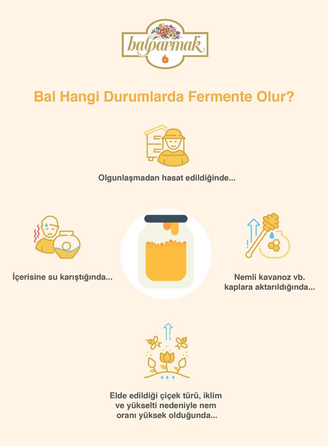 bal hangi durumlarda fermente olur